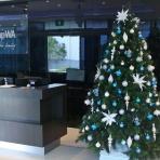 home-group-wa-perth-designer-christmas-3reduced