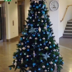 designer-christmas-1-jchristmas-tree-hire-perth