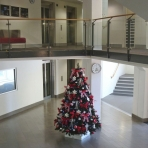 ecu-designer-christmas1-reduced