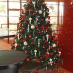 frasers-designer-christmas-reduced