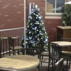 stables-bar-perth-designer-christmas-2-reduced