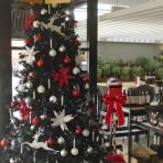 typica-designer-christmas-reduced