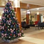 joondalup-health-campus-reduced-designer-christmas-copy