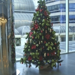 bhp-designer-christmas-2-reduced