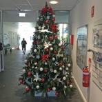 designer-christmas-christmas-tree-hire-perth-4_0