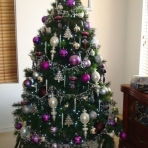 ardross-designer-christmas-1-reduced