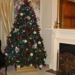 claremont-designer-christmas-reduced